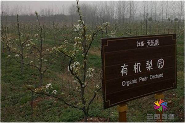 扬州仪征天乐湖团建拓展基地/拓展培训基地
